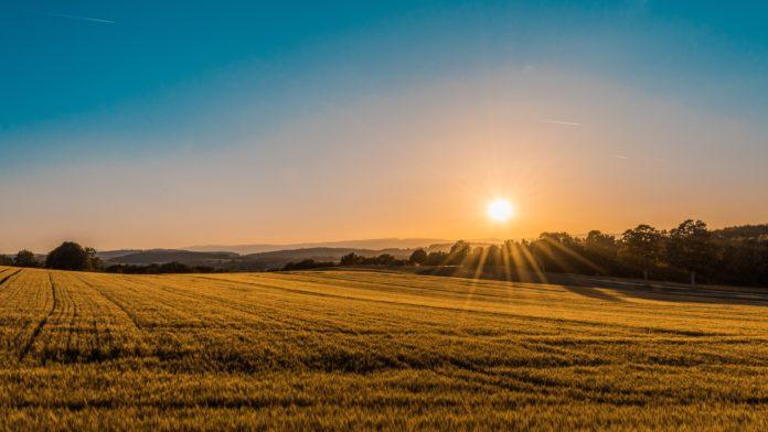 agricultura - fazenda