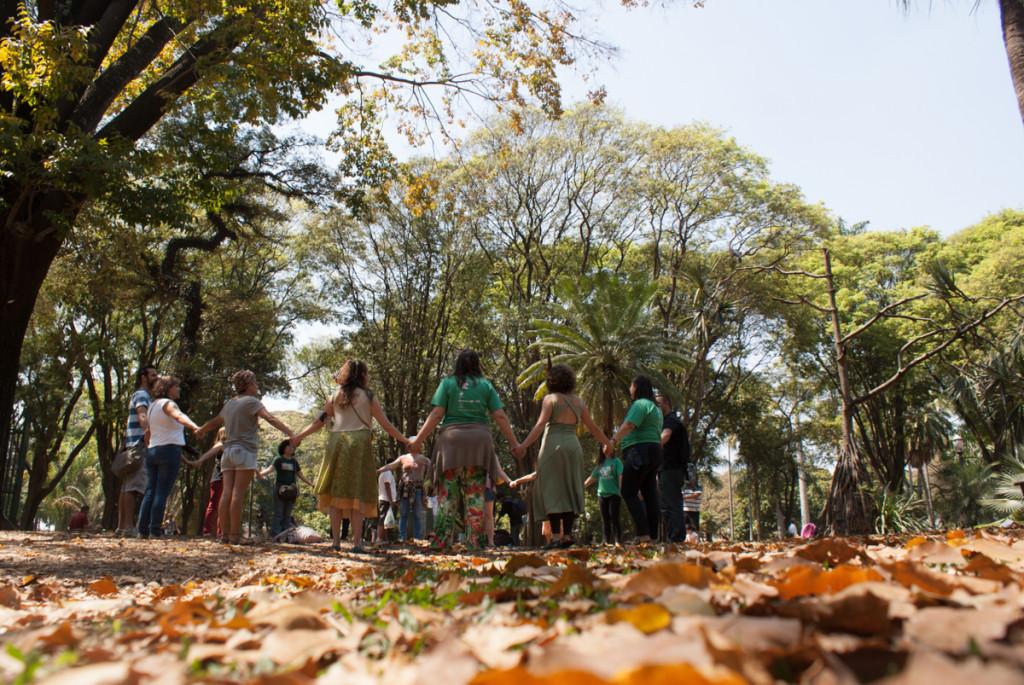 (Foto: Divulgação Árvores Vivas)