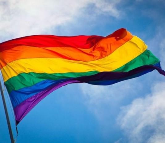 Hoje é Dia Internacional do Orgulho Gay