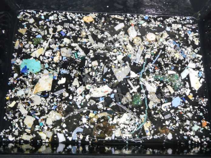 poluição de plástico no oceano