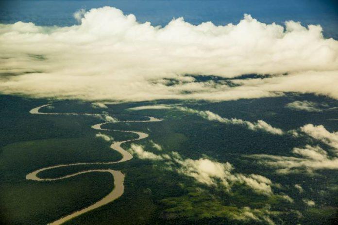 meio ambiente, Amazônia