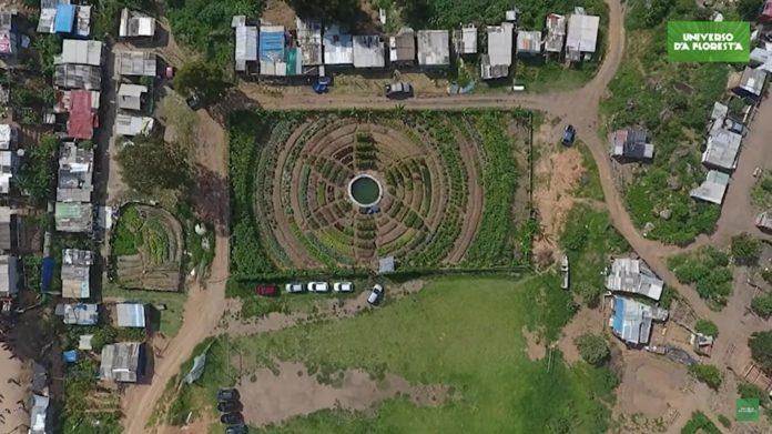 horta organica MST